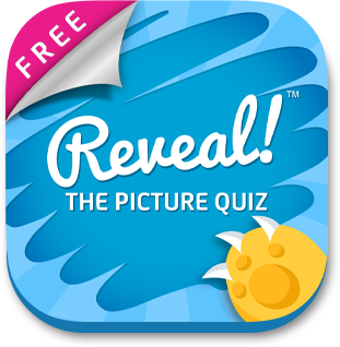 Reveal The Picture Quiz